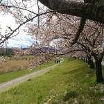 気軽に手ごろ価格で楽しめる『華蔵寺公園遊園地』