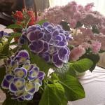 母の日に綺麗な花と美味しいスイーツ。